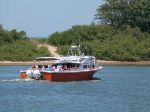 balade en bateau autour de l'île aux oiseaux