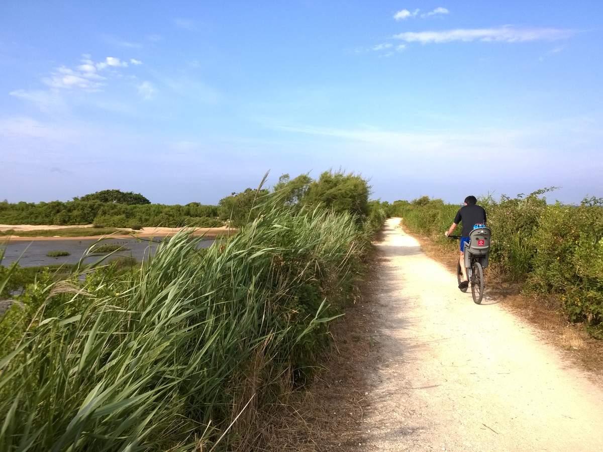 Les Pistes Cyclables Tourisme Gujan Mestras