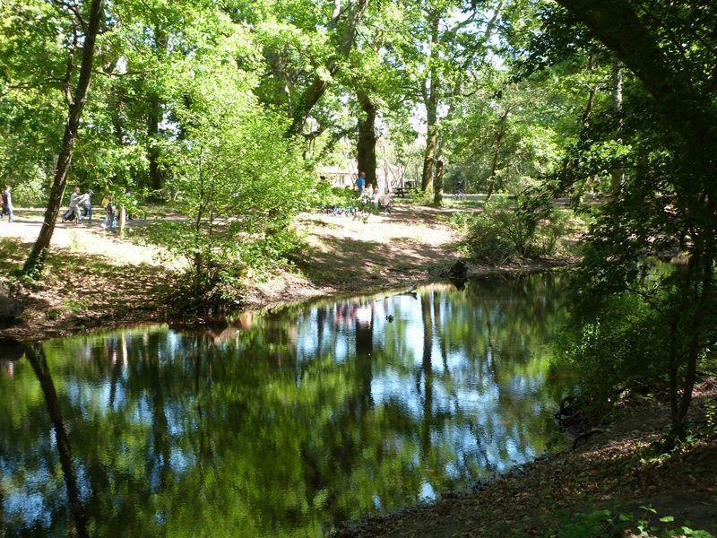 Bandeau Parc Chêneraie