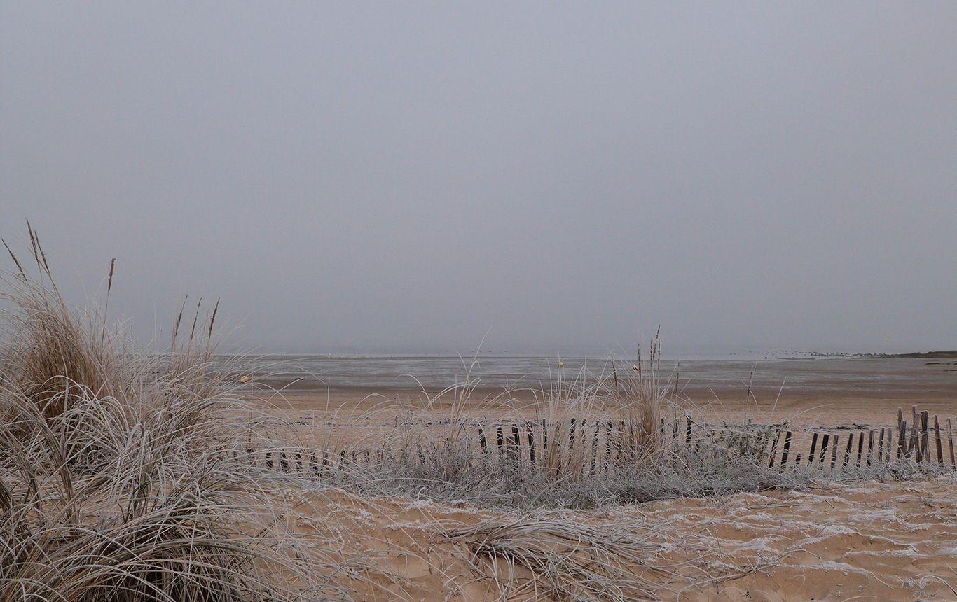 Hiver-plage-Gujan-Mestras